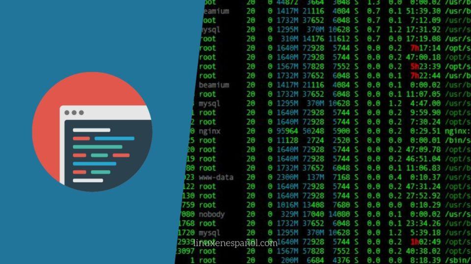 Crear usuario con privilegios de root en Linux