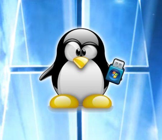 USB desde Linux