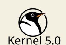 Kernel 5.0