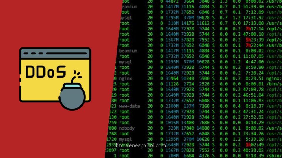 Cómo detectar ataque de Denegación de Servicio (DDoS) en Linux